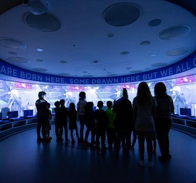 d04a8f1cc98 Thumbnail for Manchester City Football Club Stadium   Club Tour