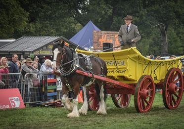 Cheshire Game and Country Show