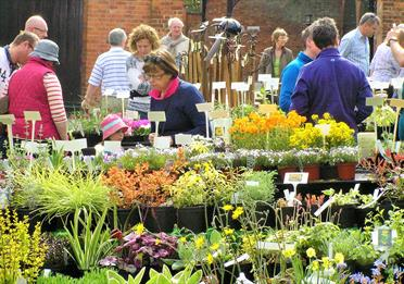 Plant Hunters' Fair at Bramall Hall, Stockport on Sunday 22nd April 2018
