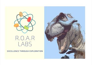 Logo for ROAR Labs, including a