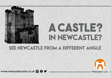 Newcastle Castle tour