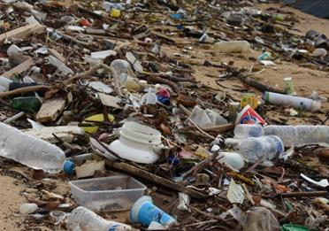 In Conversation: Plastics Action