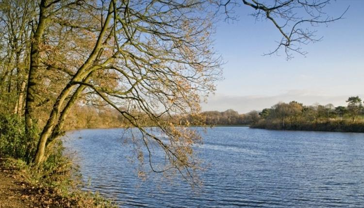 Worthington Lakes Country Park
