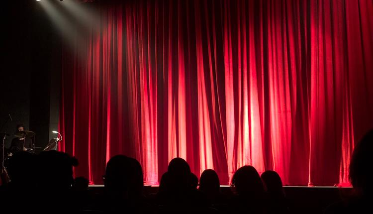 Audience at a comedy or theatre show