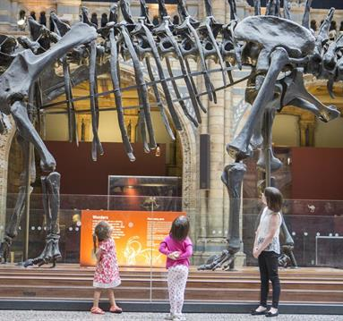 People standing in front of Dippy - on tour and visiting Rochdale