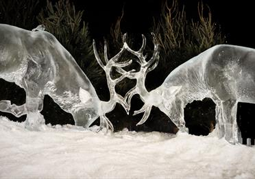 Ice Village Deer